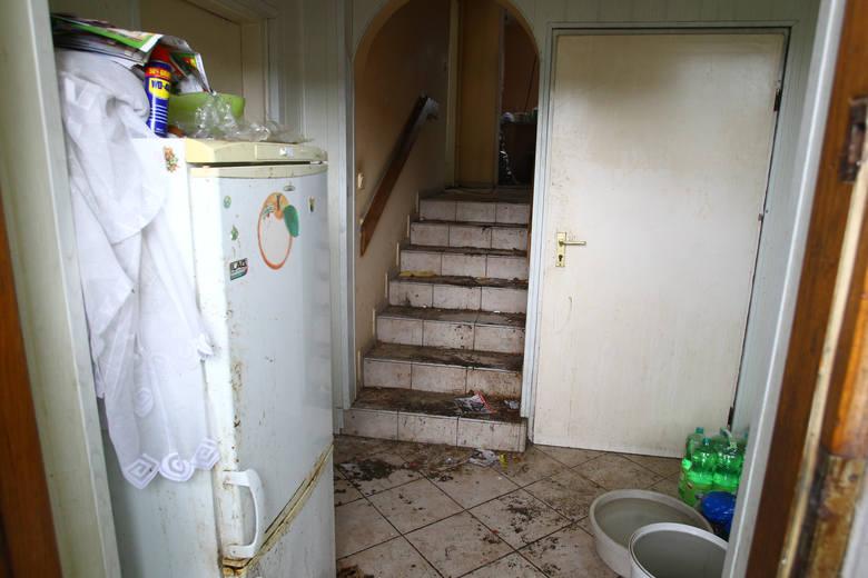 Wygląd wnętrza domu wzbudził u właścicielki przerażenie.