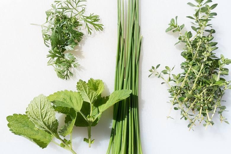 Dodając do potraw świeże lub suszone zioła, można ograniczyć dodatek soli do potraw.
