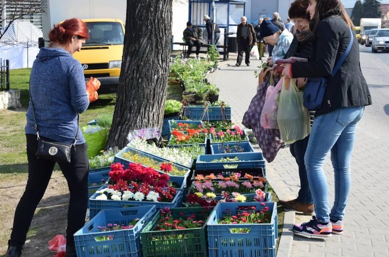 Targowiska w podkrakowskich gminach zamknięto w połowie marca. Teraz część rolno-spożywcza jest otwierana