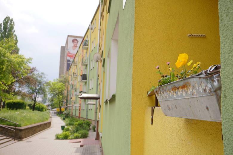 Spacerkiem po... dzielnicy Tatary w Lublinie. Zobaczcie zdjęcia