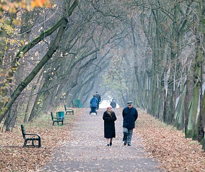 Do zaszczepienia w Łodzi jest ok. 66 tys. seniorów.