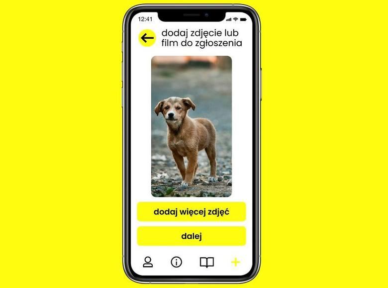 Aplikacja Animal Helper będzie posiadać prosty interfejs i intuicyjne menu.