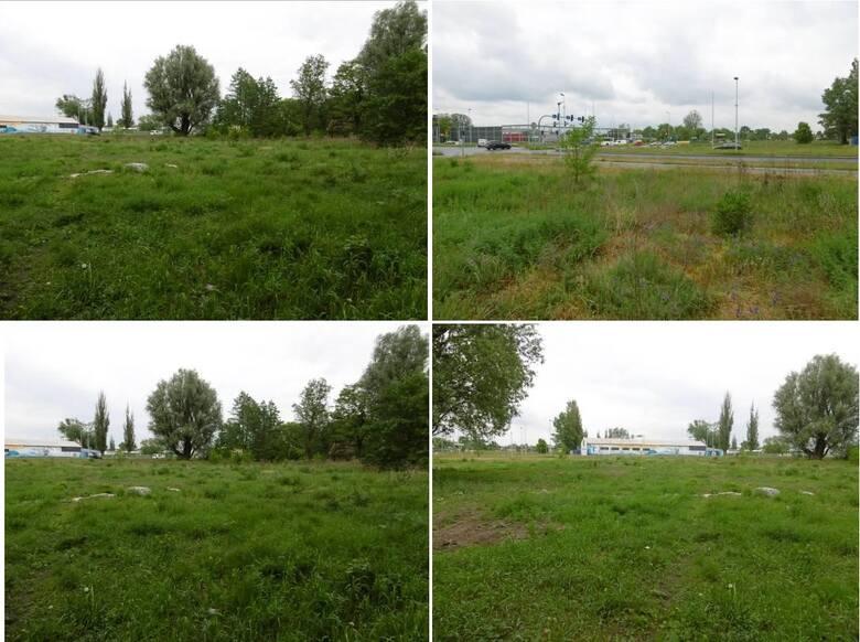 Toruń, Pod Dębową Górą / BatoregoDziałki niezabudowane oznaczone w ewidencji nr 610/9, 610/10, 607/2 obręb 43 o łącznej powierzchni 0,2170 ha, położne