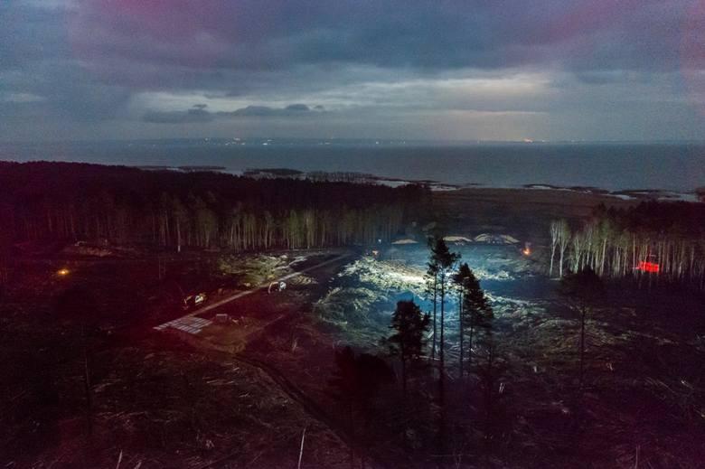 Zdjęcie pojedyncze - I miejsce w kategorii ŚRODOWISKOSkowronki. Pod przyszły przekop Mierzei Wiślanej wycięto ponad 10 tys. drzew. Żeby zdążyć z zakończeniem