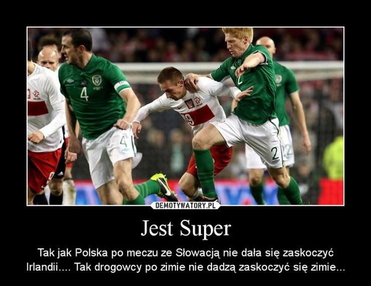 wynik meczu niemcy irlandia