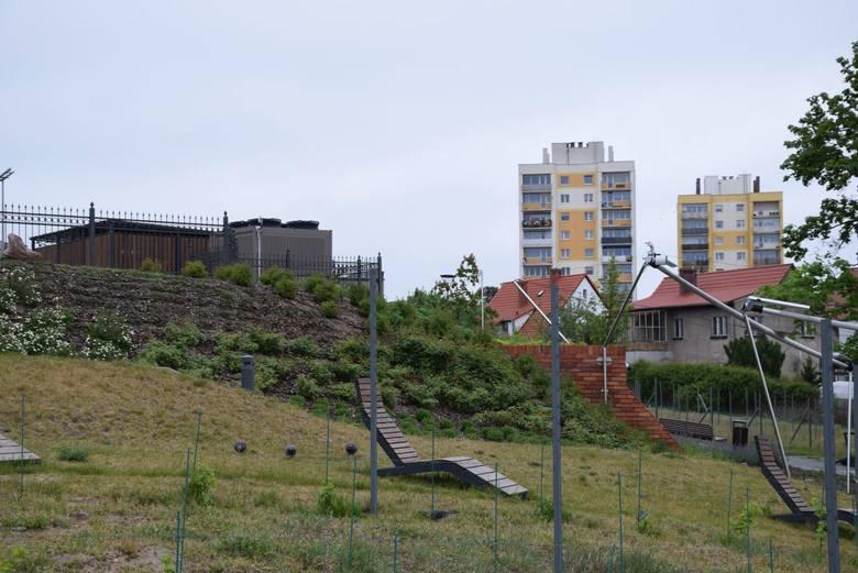 Zielona Góra, 19 maja 2020 r. Zielonogórska Palmiarnia ponownie otwiera się na gości.