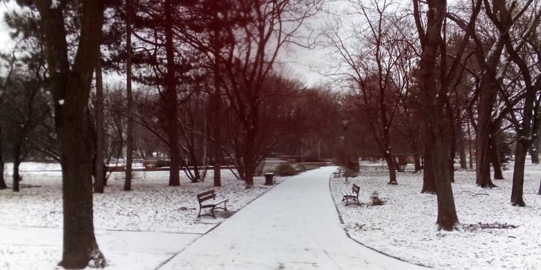 - Nareszcie przyszła zima! - Napisała do nas pani Aleksandra. Zobaczcie jej zdjęcia, które do nas przesłała, zrobione w  Parku Jedności Polonii z Macierzą