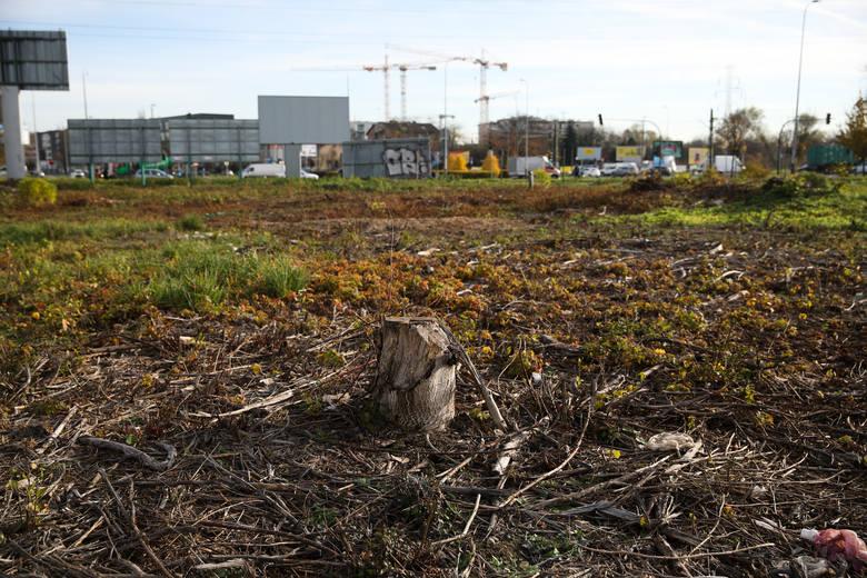 Tereny pomiędzy parkiem Lotników, AWF, al. Pokoju i ul. Nowohucką. Kiedyś rosło tu dużo drzew. Wciąż nie wiadomo, czy przeznaczeniem terenu będzie zieleń,