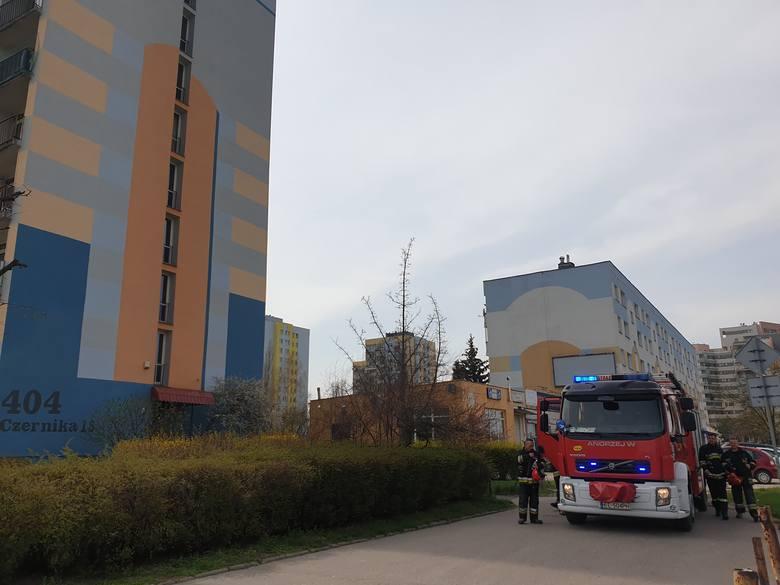 W czwartek (29 kwietnia) w wieżowcu przy ul. Czernika na Widzewie straż pożarna interweniowała dwukrotnie. Około godz. 10 ratownicy przyjechali zabezpieczać