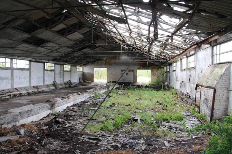 Grądy Woniecko - PGR Wizna. Z jednego z największych PGR-ów w kraju zostały ruiny [ZDJĘCIA]