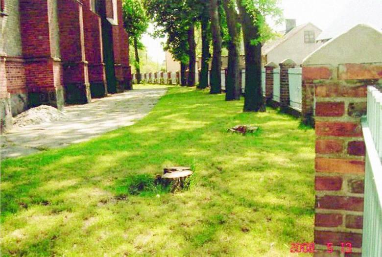 W Konecku o wycince drzew przy kościele niewiele osób chce rozmawiać. Wszyscy jednak się dziwią, że akta sprawy mogły zaginąć w Sądzie Najwyższym.