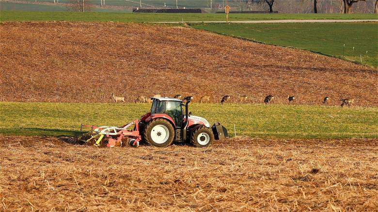 Dopłata 1 zł do litra paliwa w 2020 roku to za mało, uważają izby rolnicze