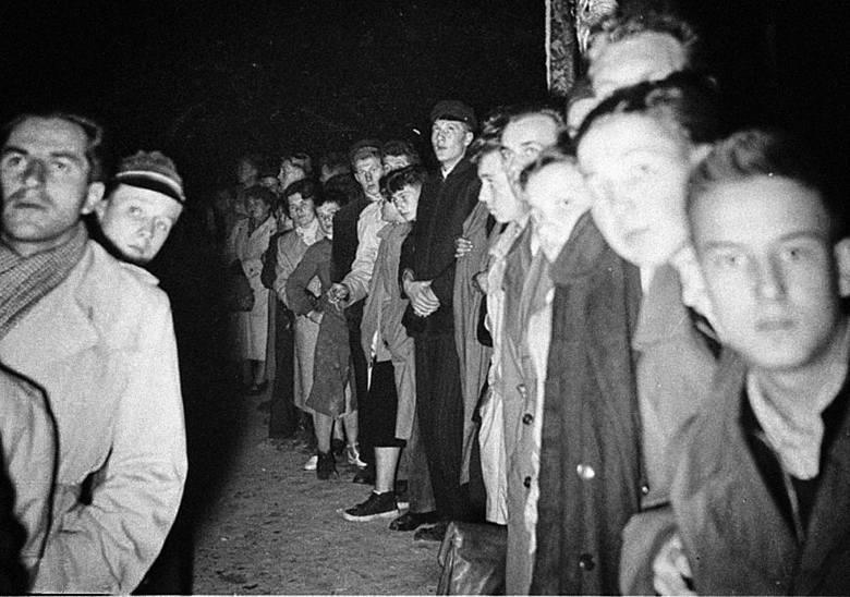 24 października 1956 r. Manifestacja na ulicy Lipowej, która wówczas miała nazwę Stalina