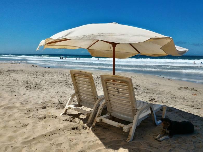 Praca za granicą a emerytura: Sprawdź, po ilu latach pracy nabywa się prawo do emerytury w różnych krajach
