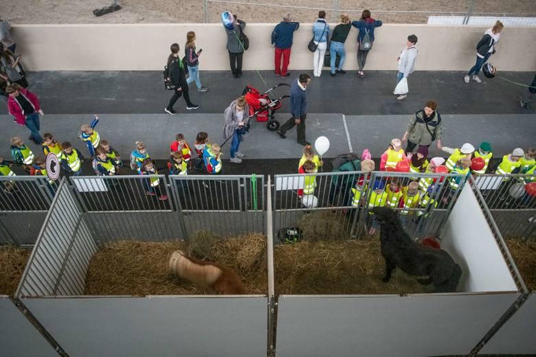 Narodowa Wystawa Zwierząt Hodowlanych to trzydniowe święto