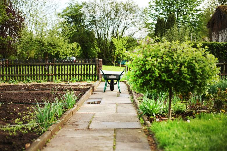 Wraz z początkiem wiosny wzrasta zainteresowanie ogródkami działkowymi. Sprawdź, gdzie można kupić ogródek działkowy we Wrocławiu. Kliknij pierwsze zdjęcie