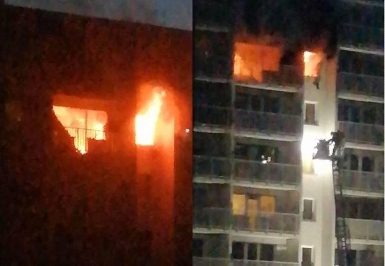 Ogień gasili z klatki schodowej i z drabin. W kuchni mieszkania, w którym wybuchł pożar, znaleziono zwęglone zwłoki. Według sąsiadów, to ciało kobie