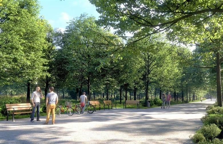 Park Zielona w Dąbrowie Górniczej po modernizacji ma się dobrze  prezentować