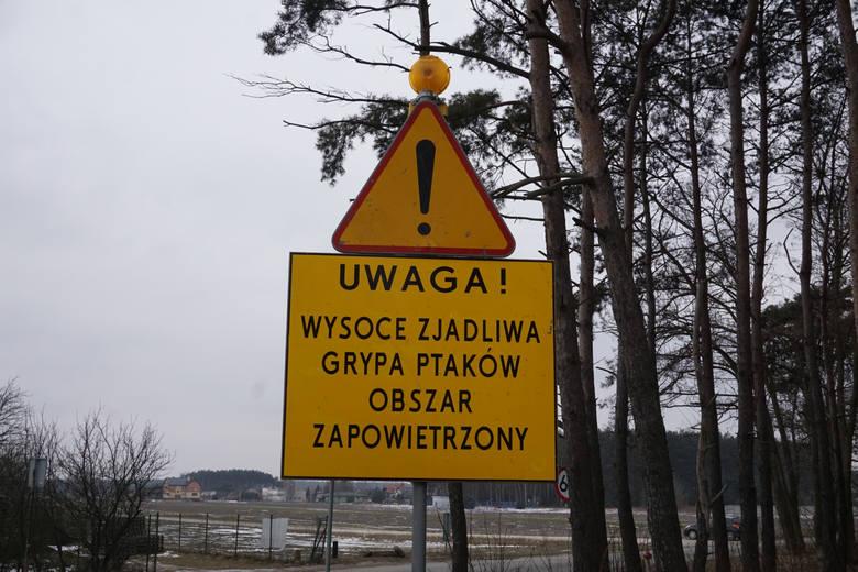 W 2020 roku na terenie Wielkopolski zostały odnotowane ogniska ptasiej grypy (HPAI), które są na bieżąco likwidowane przez służby weterynaryjne.