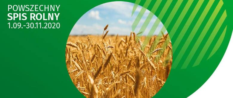 Powszechny Spis Rolny 2020. Co musisz wiedzieć o spisie rolnym? Sprawdź, jakie dane musisz udostępnić [Zasady, terminy, wytyczne]