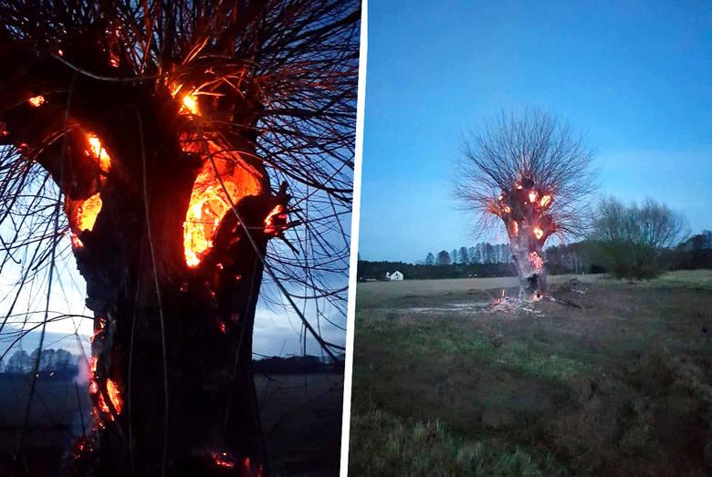 We wtorek, 12 marca, po godzinie 18 zastęp Ochotniczej Straży Pożarnej z Brzozy został zadysponowany do Przyłęk pod Bydgoszczą - na ul. Księżycową do