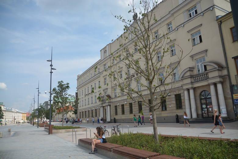 Kasztanowce różowe zostały posadzone w ciągu Krakowskiego Przedmieścia, po powiększeniu placu Litewskiego kosztem ulicy