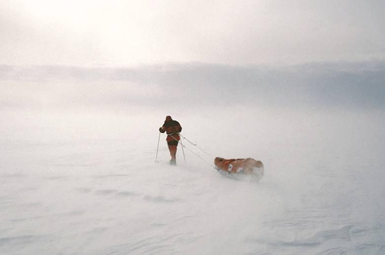 Jedną z najtrudniejszych rzeczy w mozolnej wędrówce na biegun jest ciągnięcie za sobą wielkich i ciężkich sań