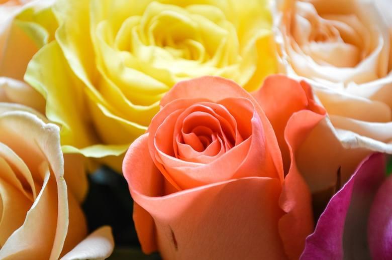 Serca Kwiaty Zyczenia Bezplatne Ilustracje Na Dzien Kobiet Na 8 Marca Pobierz I Zloz Zyczenia Expressbydgoski Pl