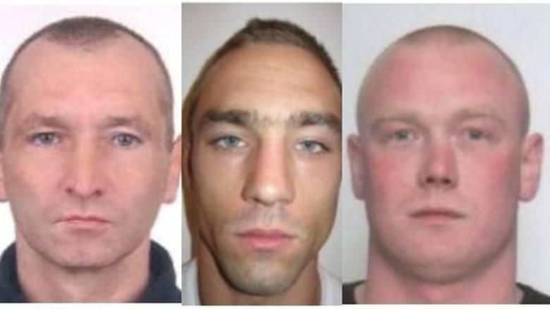 Tych dilerów i handlarzy narkotyków poszukują radomscy policjanci. Te osoby są ścigane za wprowadzanie do obrotu narkotyków oraz czerpanie z handlu środkami