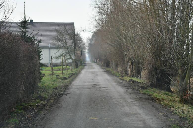 Opuszczone domy i gospodarstwa w Nowej Ameryce można spotkać niemal w każdej z tutejszych wsi. Niektóre stare domu budzą grozę.