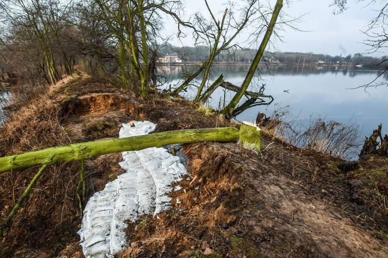 Kilkudziesięciu strażaków uszczelniało wczoraj groblę, przez którą przedarła się woda ze starego portu drzewnego. Akcja trwała przez kilka godzin i zakończyła