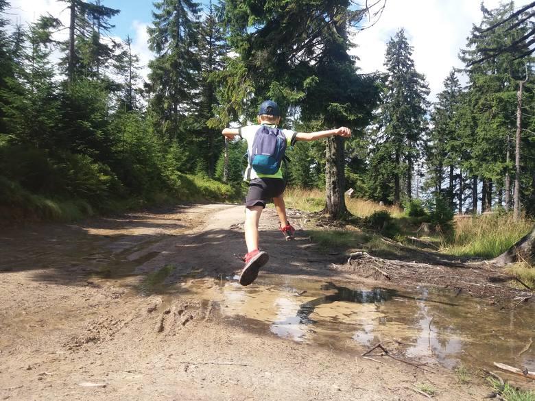 Gdzie w góry z dziećmi? 10 pomysłów na krótki wypad z Krakowa [TRASY, SZLAKI, ZDJĘCIA]