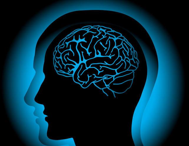 Naukowcy wiedzą już jak zapobiec utracie pamięci, która ma związek z procesem starzenia, depresją oraz takimi chorobami jak alzheimer. Okazuje się, że