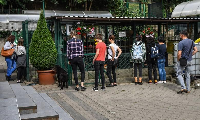 Schronisko dla Zwierząt w Bydgoszczy w sobotę (29.08.) otworzyło swe drzwi dla gości. Każdy mógł przyjść i poznać lepiej pracę oraz bieżące potrzeby