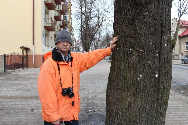Piotr Grzegorzek na emeryturze nie żegna się z Muzeum w Chrzanowie. Znany botanik nadal chce popularyzować wiedzę
