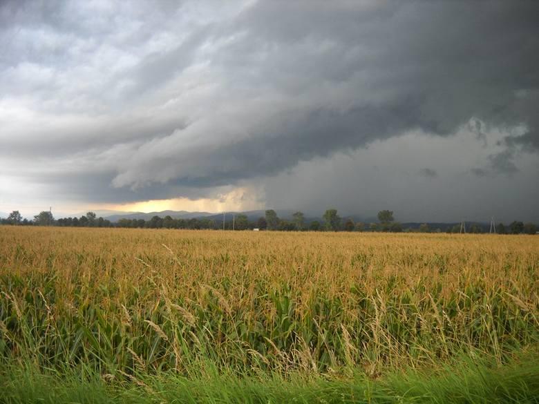 Pogoda na jutro, woj. kujawsko-pomorskie - 09.05.2014. W piątek czeka nas piękny poranek i...