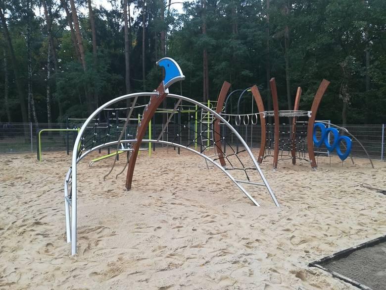 Dinozaury już są w Pabianicach. Zamieszkały w Parku Wolności