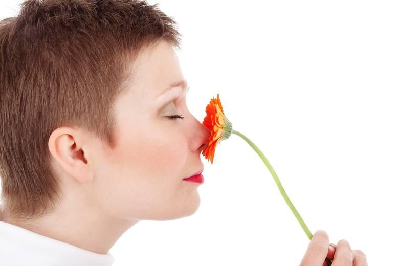 Operacje nosa należą do najpopularniejszych zabiegów upiększających. Korekta przegrody nosowej, niwelacja garbka, zwężenie bądź skrócenie nosa kosztuje