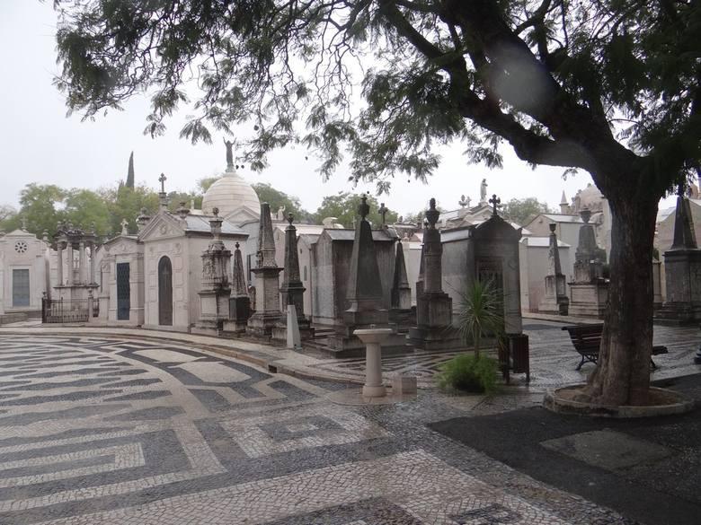 Tak wyglądają cmentarze europejskich stolic. Tym razem nekropolie w Wiedniu i Lizbonie [ZDJĘCIA]
