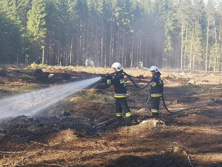 Pożar przy Kamiennych Kręgach w gm. Manowo