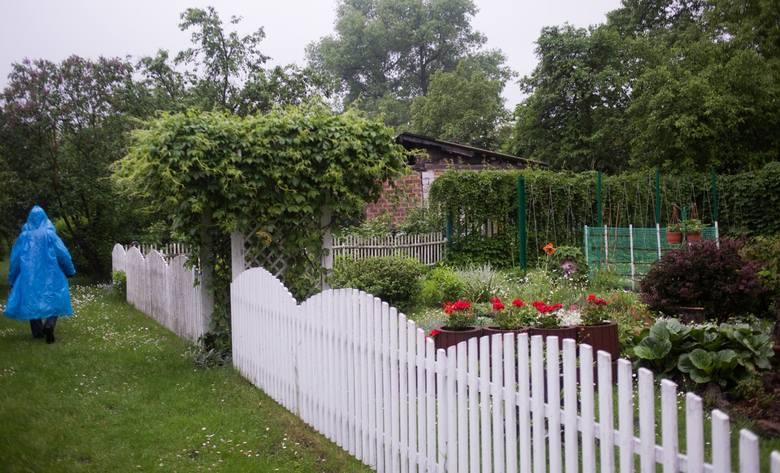 W Polsce funkcjonuje ponad 4600 rodzinnych ogrodów działkowych, w których jest łącznie ponad 900 tysięcy działek. Okręg Poznański Polskiego Związku Działkowców
