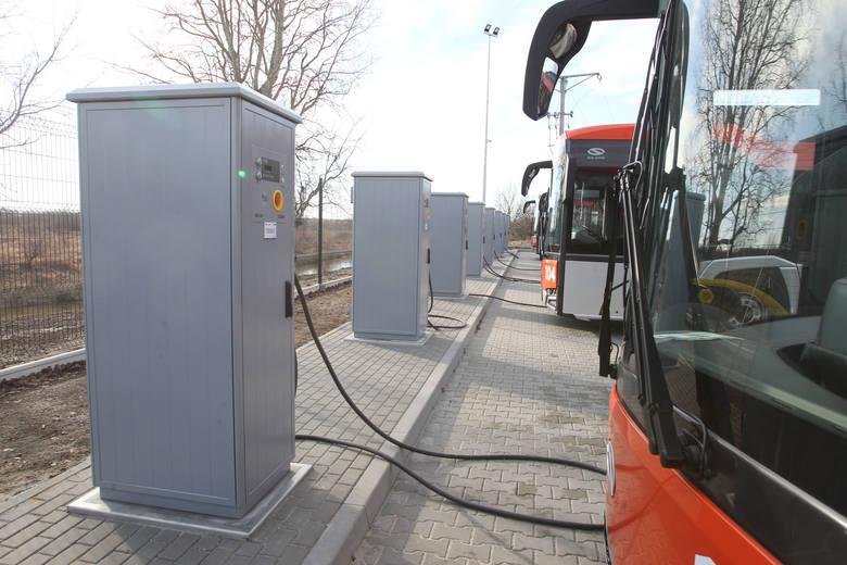 Elektryczna komunikacja miejska na Kujawach i Pomorzu. Kiedy, gdzie i po ile?