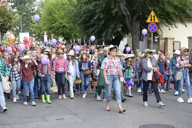 Tradycyjną paradą, pełną barw i pięknych strojów rozpoczęło się Skierniewickie Święto Kwiatów 2019. Korowód ruszył z ul. Rybickiego, a następnie ulicami miasta dotarł do rynku. Było na co popatrzeć.