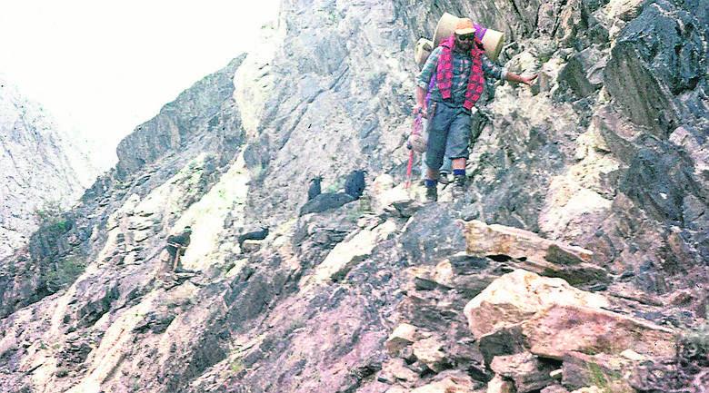 Sajnog zajmował się też zaopatrywaniem obozów na wysokości 7 tys. m i wyżej