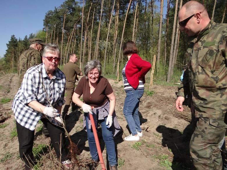 Około 200 mieszkańców gminy wzięło udział w pięknej akcji. Z okazji przypadających w tym roku 750. urodzin Gniewkowa zasadzili 750 dębów. Akcję zainicjowało