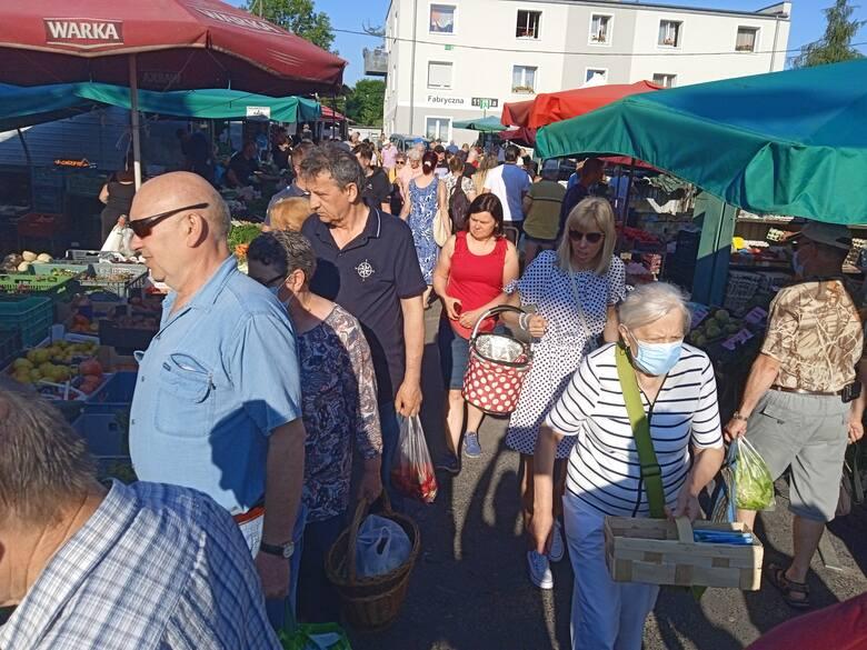 Sobota targowa na rynku przy ul. Owocowej w Zielonej Górze. Ile obecnie kosztują świeże warzywa i owoce?