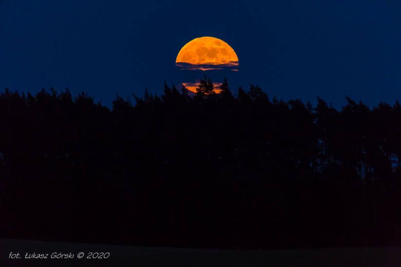 Ostatni Superksiężyc w 2020 roku zachwycił! Na niebie pojawiła się niezwykle piękna pełnia Kwiatowego Księżyca. Majowa pełnia Księżyca jest wyjątkowa