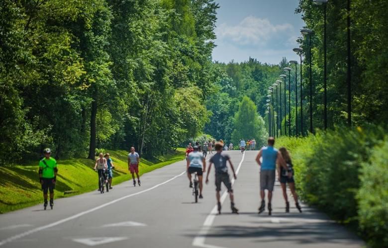Dlaczego warto żyć w Katowicach?