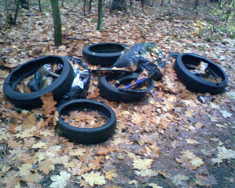 Śmietnik w lesie w Bobrownikach