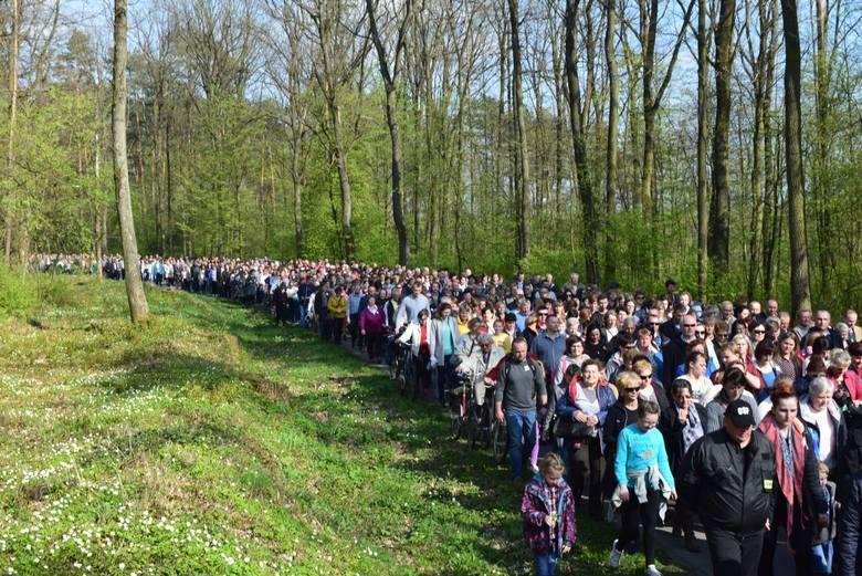 Droga krzyżowa rozpoczęła się w Jagielle podążając do Gniewczyny Łańcuckiej. Podczas każdej stacji drogi odbywały się, krótkie inscenizacje. Wzięło w